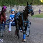 Harness Pony Racing Bermuda, January 1 2015-4
