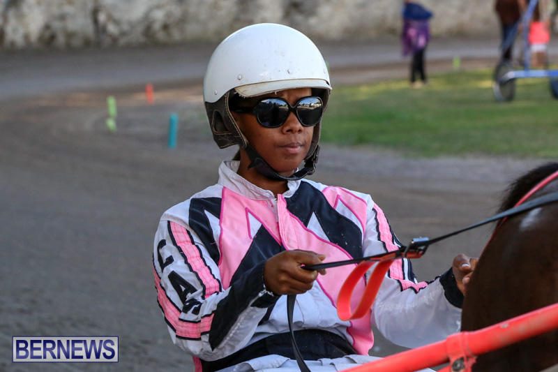 Harness-Pony-Racing-Bermuda-January-1-2015-6