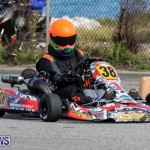 Karting Bermuda, January 18 2015-18