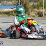 Karting Bermuda, January 4 2015-12