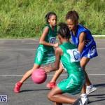 Netball Bermuda, January 17 2015-11