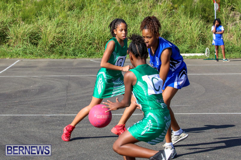 Netball-Bermuda-January-17-2015-11