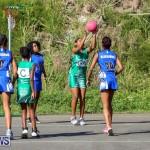 Netball Bermuda, January 17 2015-15