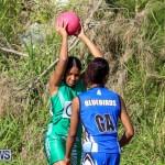 Netball Bermuda, January 17 2015-16