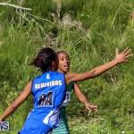 Netball Bermuda, January 17 2015-19