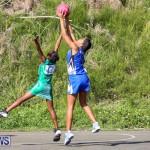 Netball Bermuda, January 17 2015-20