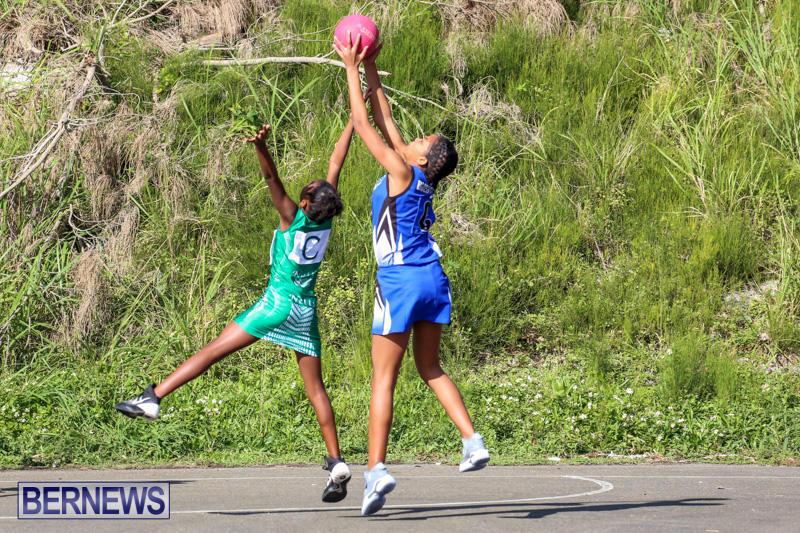 Netball-Bermuda-January-17-2015-20