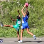 Netball Bermuda, January 17 2015-21