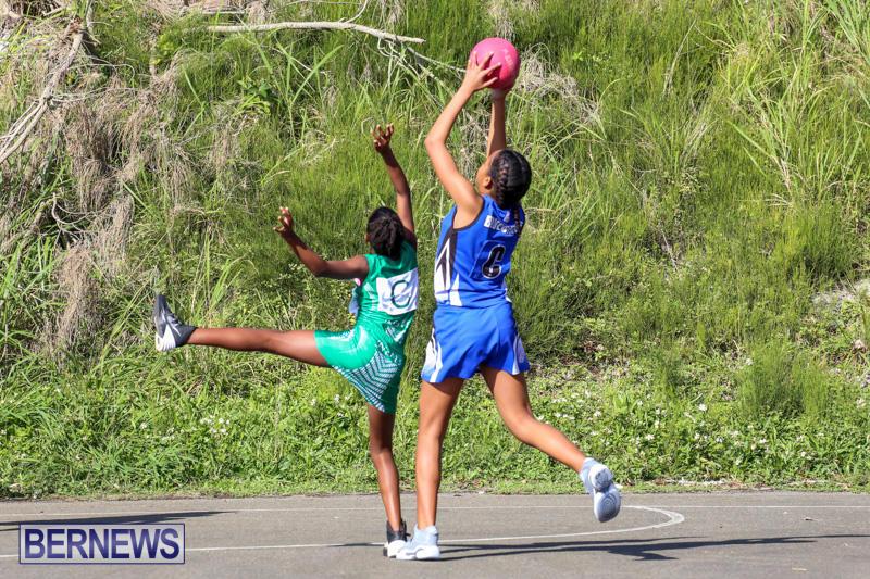 Netball-Bermuda-January-17-2015-21