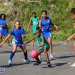 Netball Bermuda, January 17 2015-27