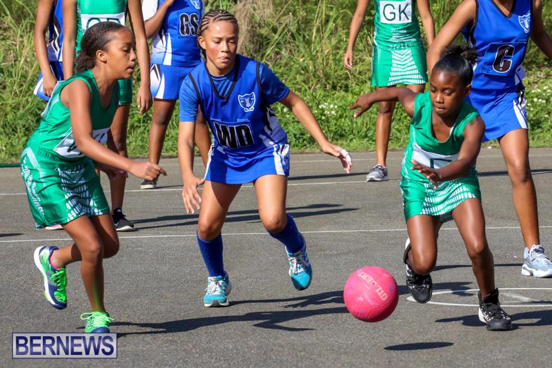Netball-Bermuda-January-17-2015-28