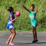 Netball Bermuda, January 17 2015-32