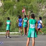 Netball Bermuda, January 17 2015-34