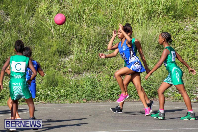 Netball-Bermuda-January-17-2015-38