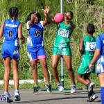 Netball Bermuda, January 17 2015-39