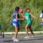 Netball Bermuda, January 17 2015-42