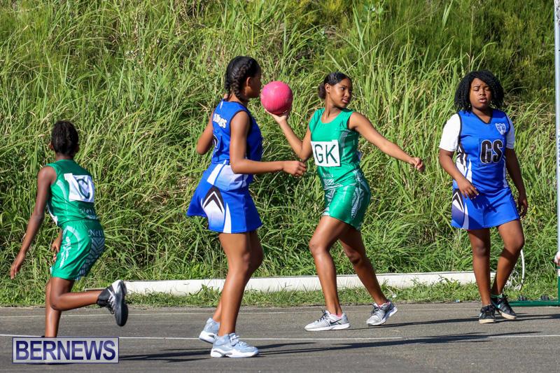 Netball-Bermuda-January-17-2015-42