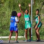 Netball Bermuda, January 17 2015-43