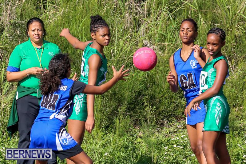 Netball-Bermuda-January-17-2015-45