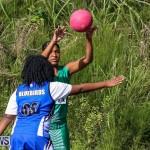 Netball Bermuda, January 17 2015-48