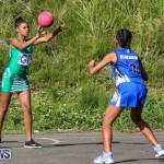 Netball Bermuda, January 17 2015-49