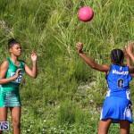 Netball Bermuda, January 17 2015-50