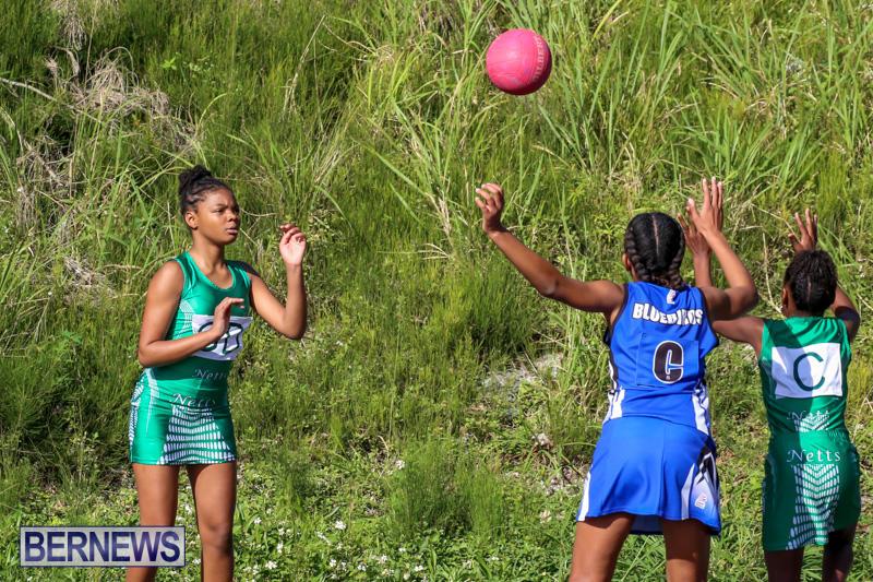 Netball-Bermuda-January-17-2015-50