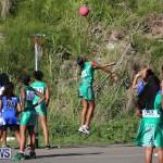 Netball Bermuda, January 17 2015-52