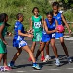 Netball Bermuda, January 17 2015-55