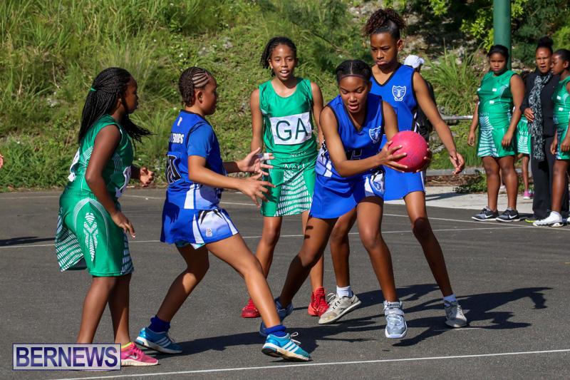 Netball-Bermuda-January-17-2015-55
