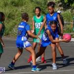 Netball Bermuda, January 17 2015-56