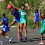 Netball Bermuda, January 17 2015-58