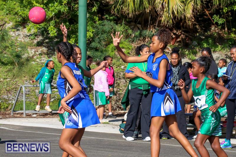 Netball-Bermuda-January-17-2015-6