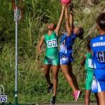 Netball Bermuda, January 17 2015-62