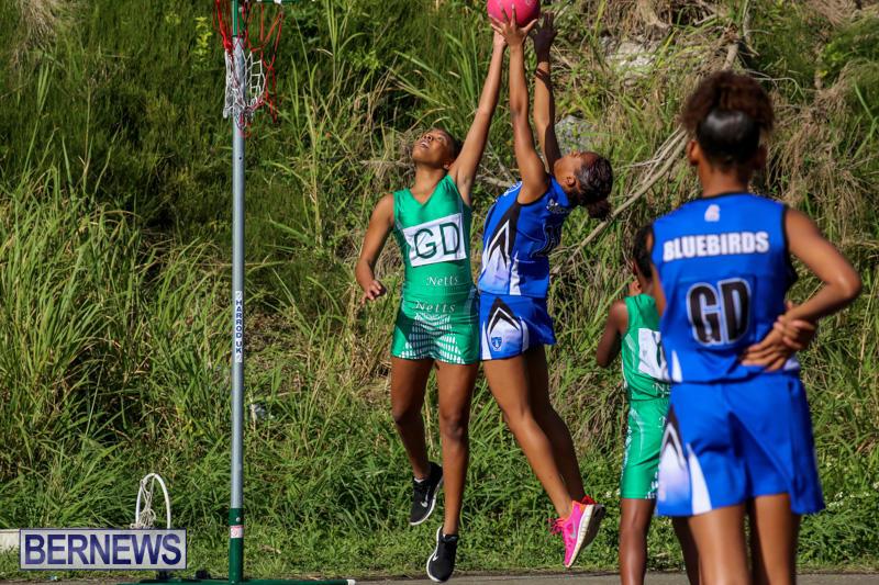 Netball-Bermuda-January-17-2015-62