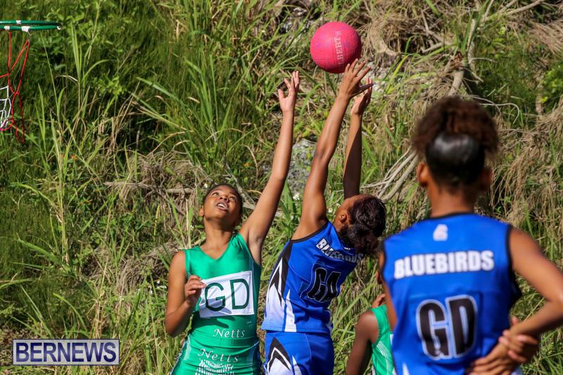 Netball-Bermuda-January-17-2015-63