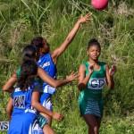 Netball Bermuda, January 17 2015-65