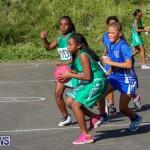 Netball Bermuda, January 17 2015-67