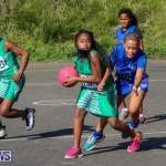 Netball Bermuda, January 17 2015-68
