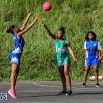 Netball Bermuda, January 17 2015-73