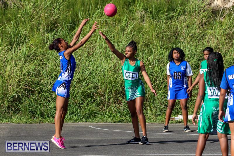 Netball-Bermuda-January-17-2015-73