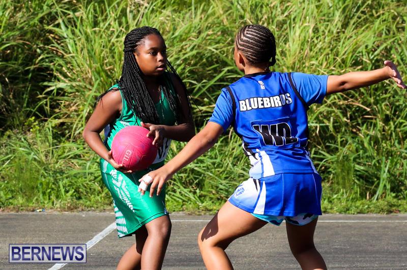 Netball-Bermuda-January-17-2015-78