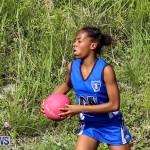 Netball Bermuda, January 17 2015-83