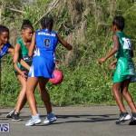 Netball Bermuda, January 17 2015-84