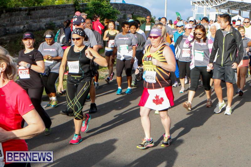 Race-Weekend-10K-Bermuda-January-17-2015-111