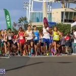 Race Weekend 10K Bermuda, January 17 2015-119