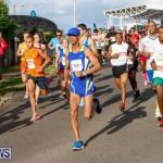 Race Weekend 10K Bermuda, January 17 2015-12