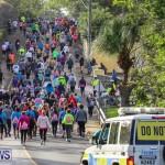 Race Weekend 10K Bermuda, January 17 2015-121