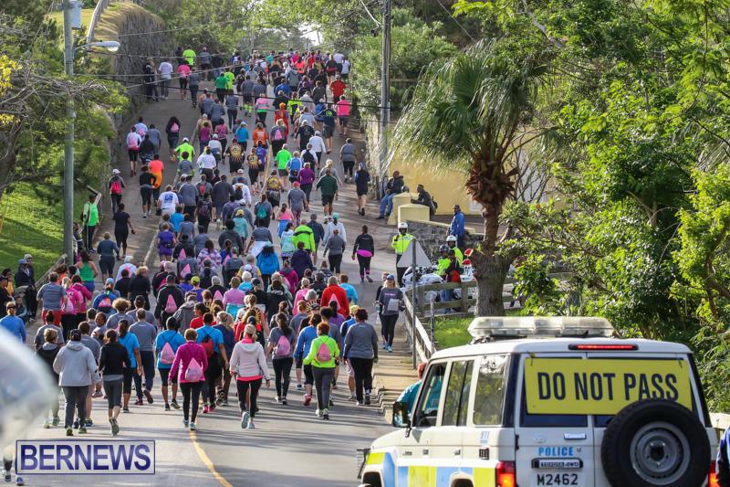 Race-Weekend-10K-Bermuda-January-17-2015-121
