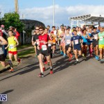 Race Weekend 10K Bermuda, January 17 2015-15